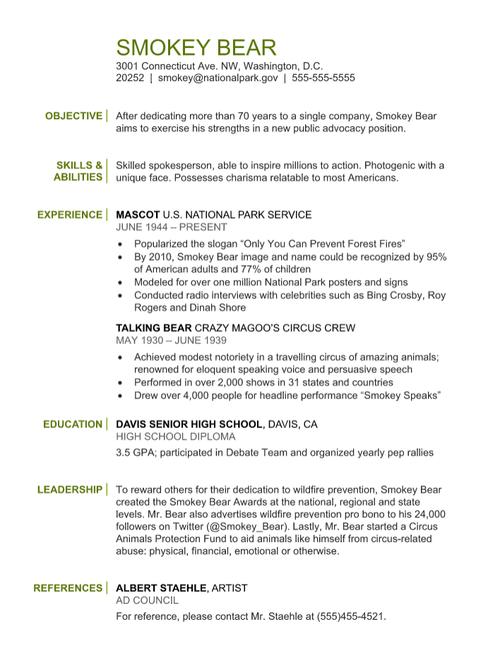 Smokey Bear Resume - Functional